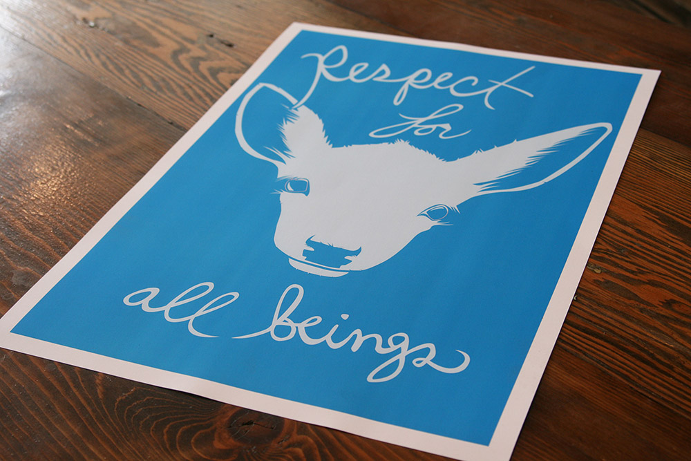 respect-for-all-beings_4645