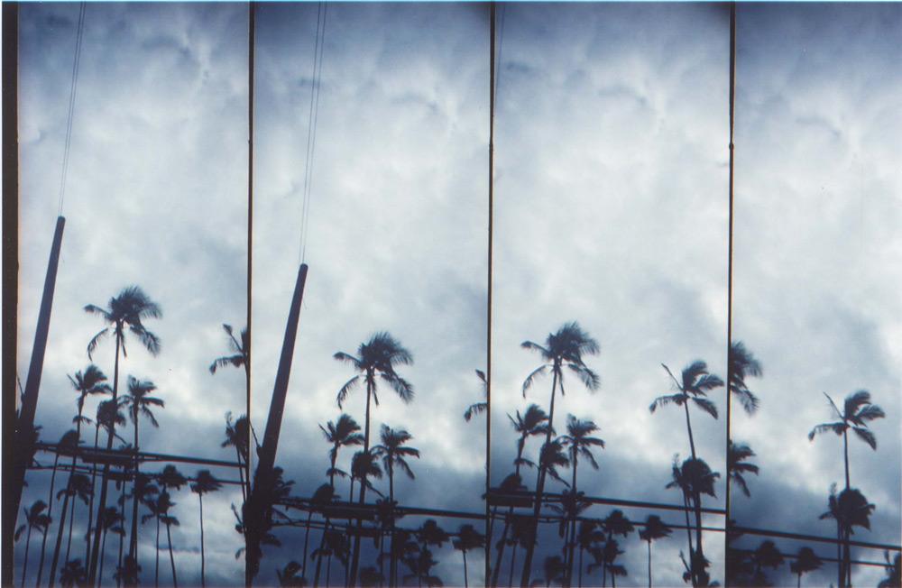 raven+crow_fours_storm