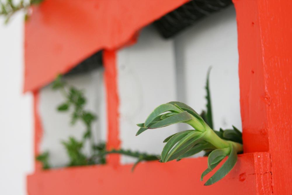 palette-planter_2249
