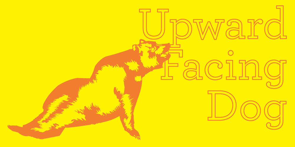 upward-facing-dog-california